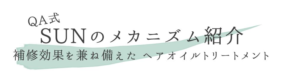 QA式SUNのメカニズム紹介